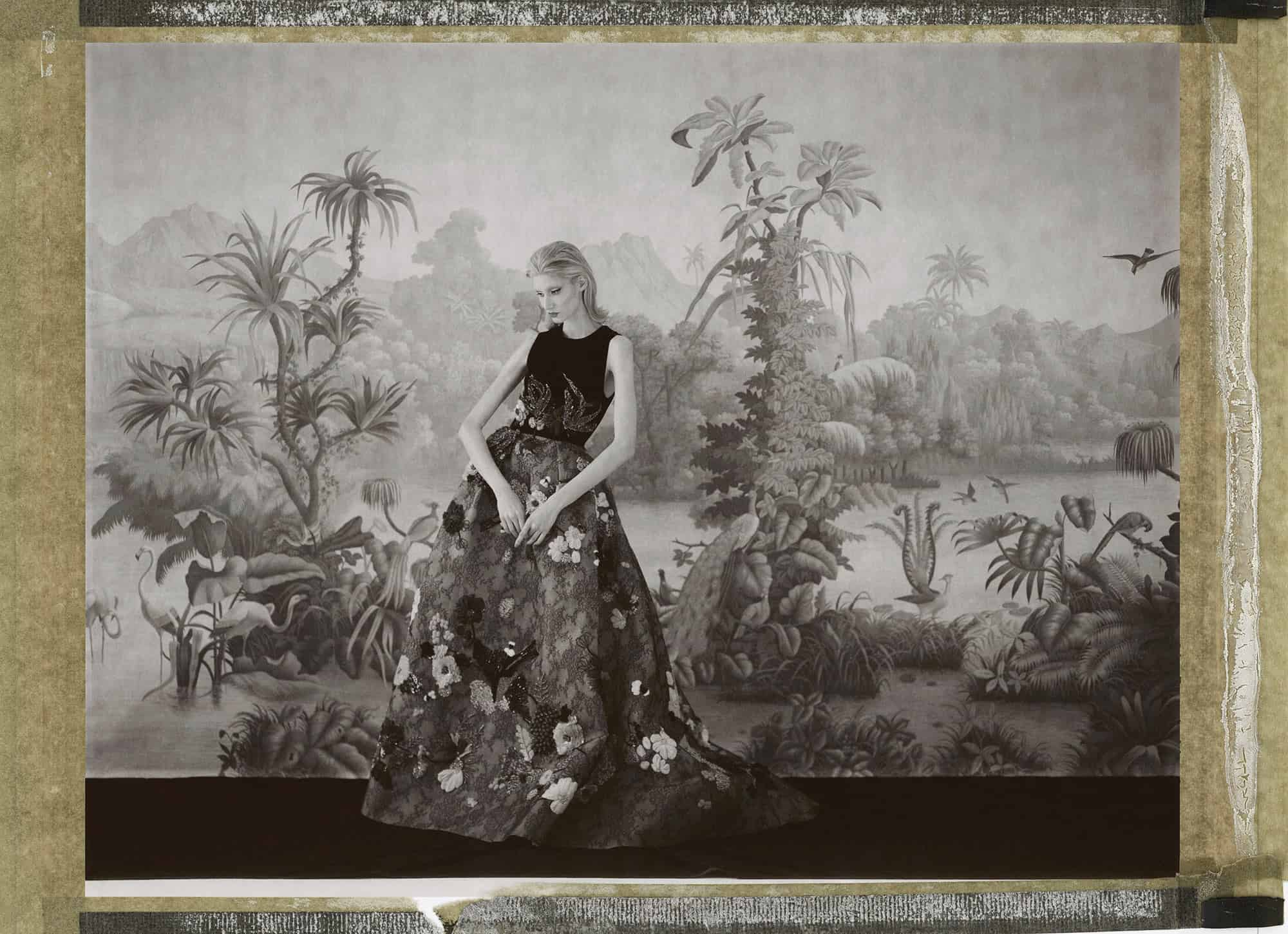 Fine art b/w photography of fashion model wearing haute couture by Elie Saab, in front of a painted wallpaper depicting jungle in Brazil. Wallpaper by de Gournay.