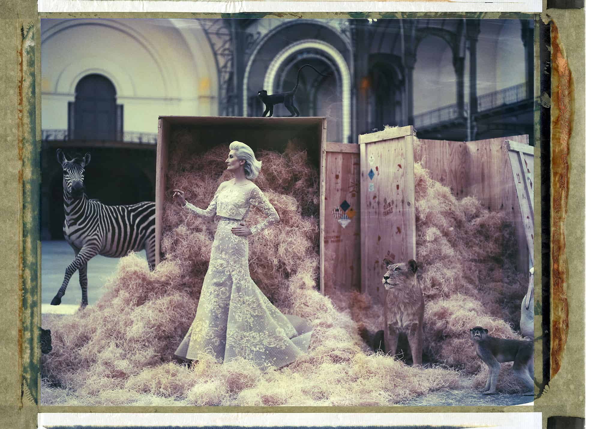 Fine art color photography of a fashion model wearing haute couture by Elie Saab with stuffed zebra, lion and two monkeys, at the Grand Palais, Paris.