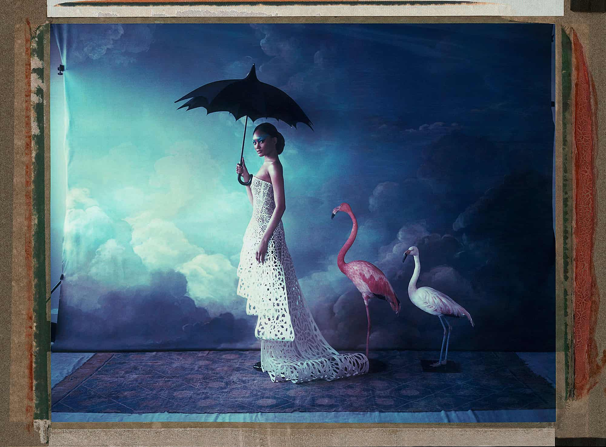 Fine art color photography of a fashion model wearing haute couture by Rani al Ali, with flamingos. Hand-painted backdrop with sky.