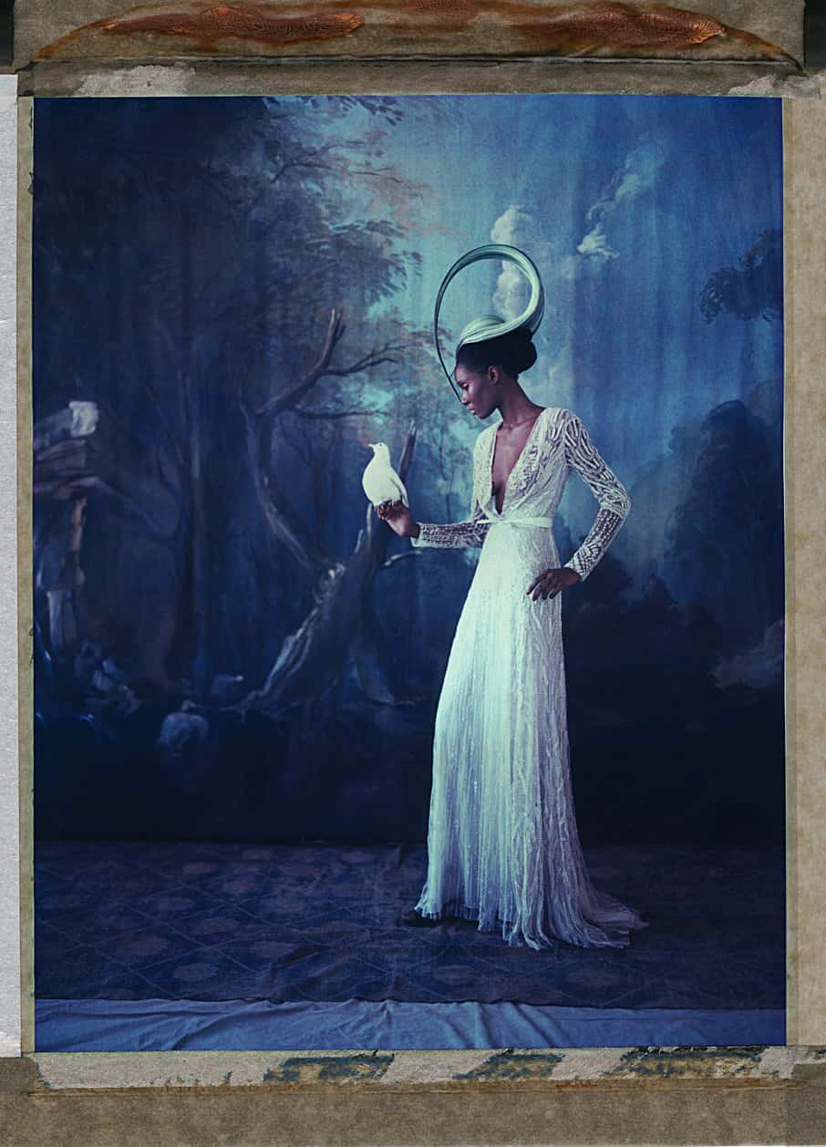 Fine art color photography of a black fashion model wearing haute couture by Elie Saab and hat by Philip Treacy, with a dove. Hand-painted backdrop of forst.