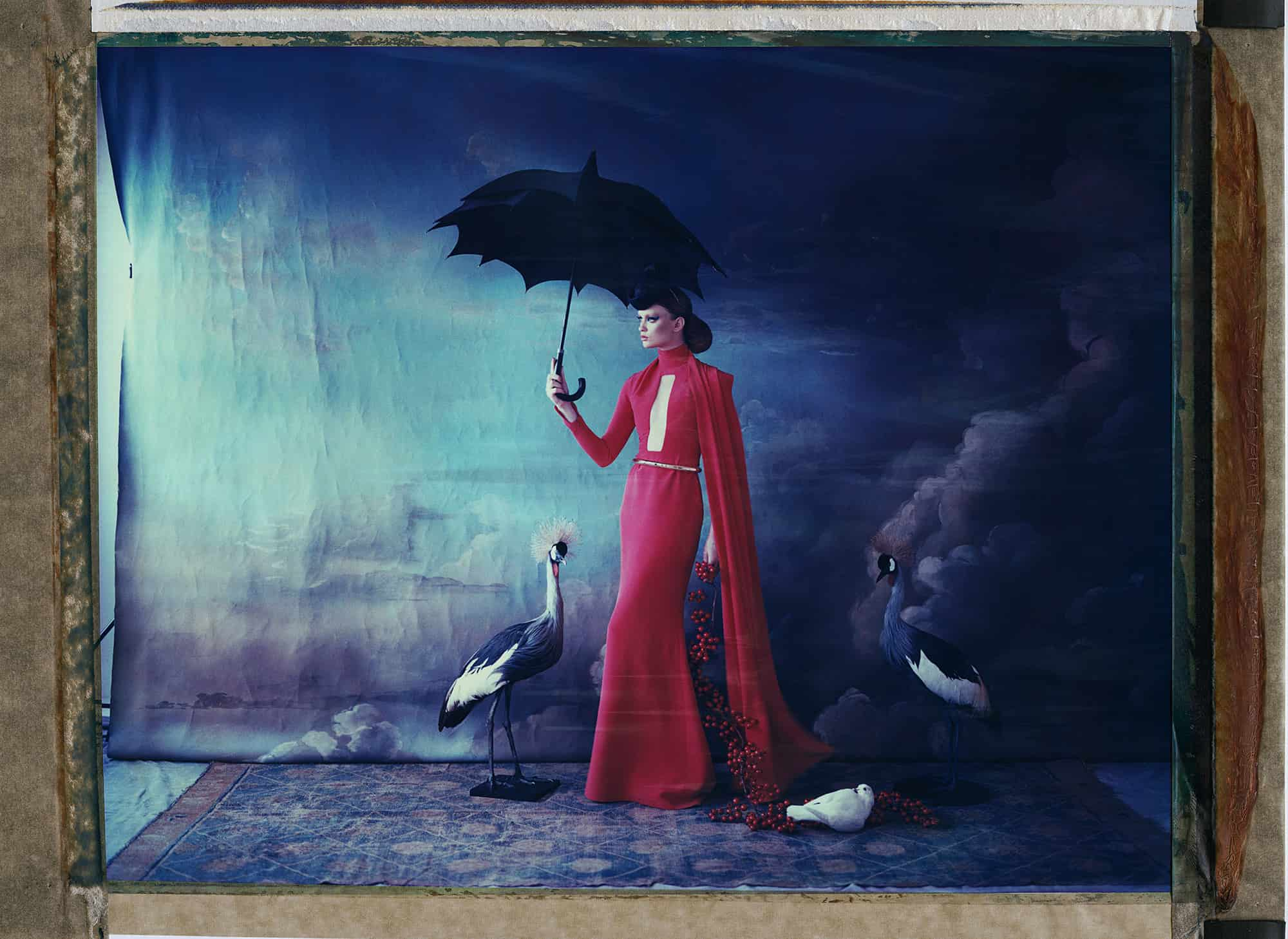 Fine art color photography of a fashion model wearing haute couture by Stepfane and hat by Philip Treacy, with doves and two stuffed black crowned cranes. Hand-painted backdrop of sky.
