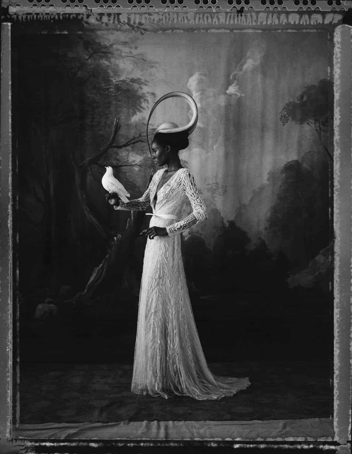 Fine art b/w photography of a black fashion model wearing haute couture by Elie Saab and hat by Philip Treacy, with a dove. Hand-painted backdrop of forst.