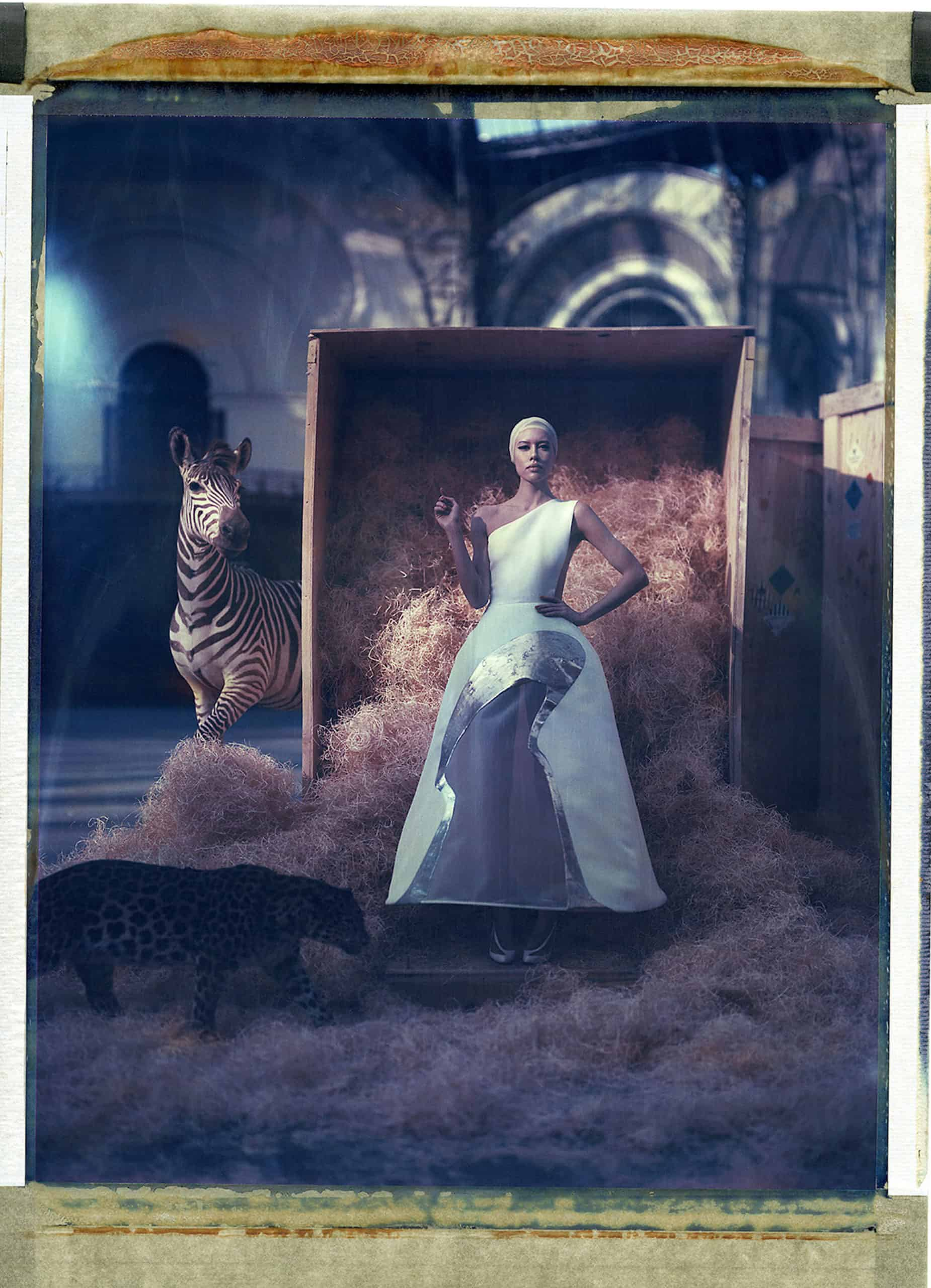 Fine art color photography of a fashion model wearing haute couture by Stephane Rolland with stuffed zebra and leopard, at the Grand Palais, Paris.