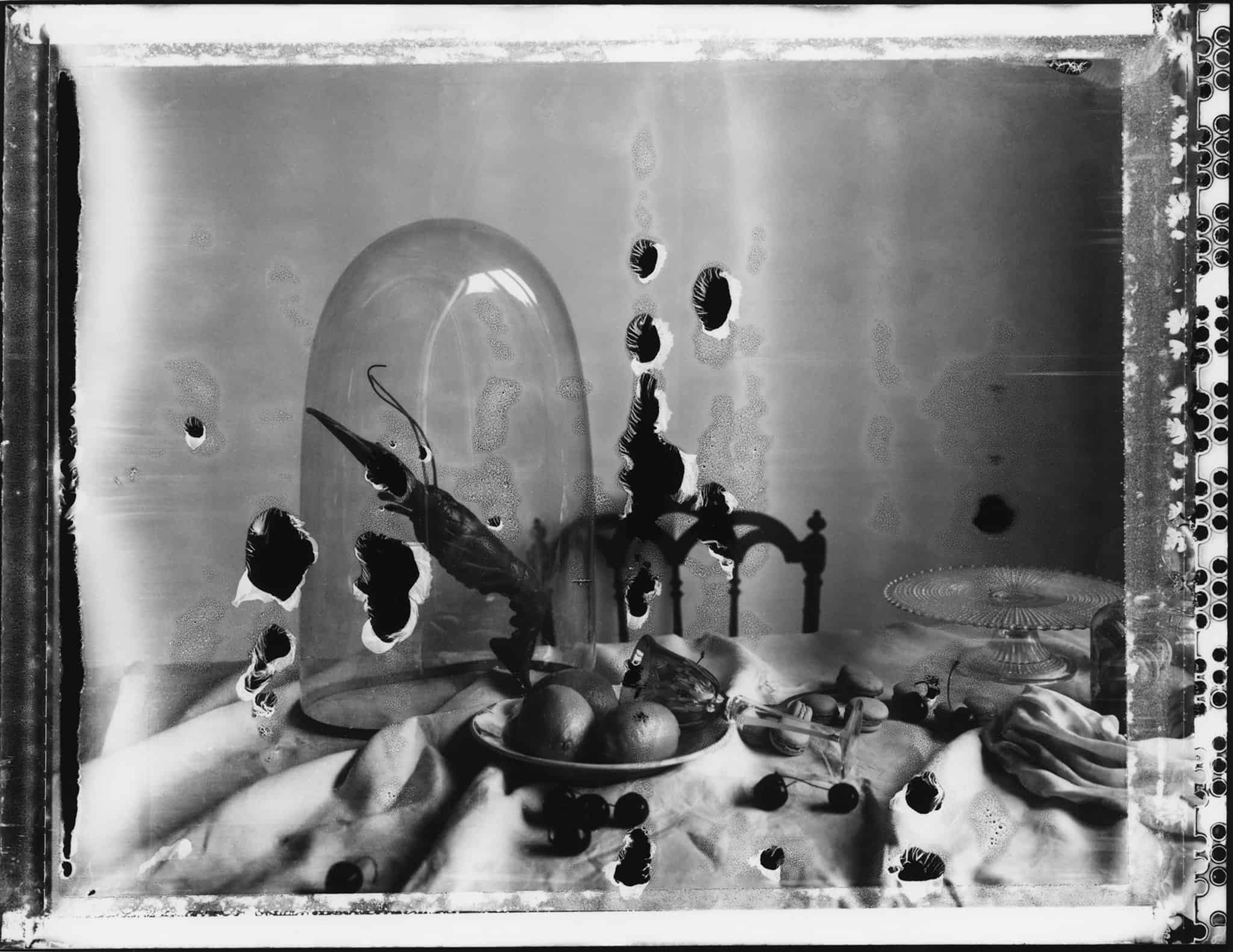 Fin art b/w photography of a still life with lobster and citrons and cherries.