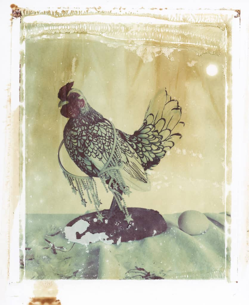 Fine art color photography of stuffed chicken with CHANEL jewellery necklace and an egg.